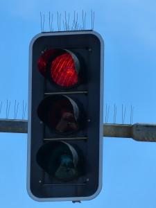 Rotlichtverstoß Verkehrsrecht Verkehrsordnungswidrigkeit